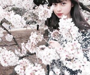 桜 and 中条あやみ image