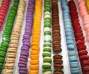 bright colours, colours, and macaroons image