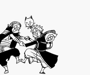 fairy tail, natsu, and happy image