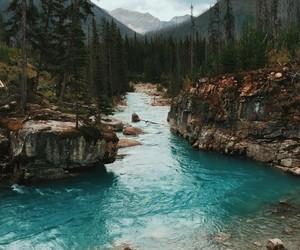beautiful, random, and traveling image