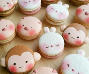 baking, bunny, and cooking image
