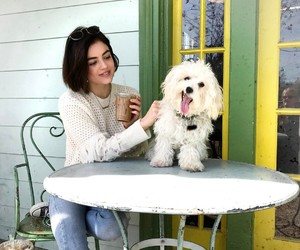 lucy hale, pretty little liars, and dog image