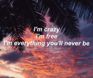 quotes, crazy, and tumblr image