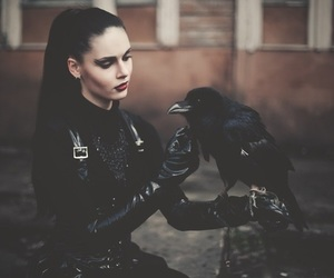 crow, gothic, and black image