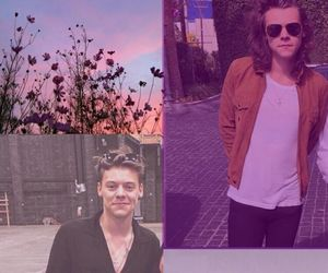 1d, fondos de pantalla, and Harry Styles image