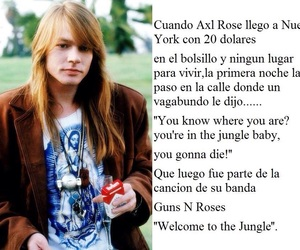 guns and roses, quotes, and axel rose image