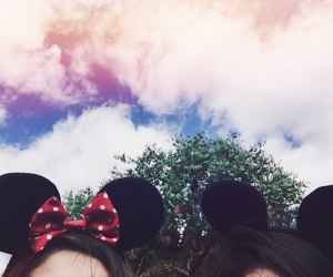colors, ears, and goals image