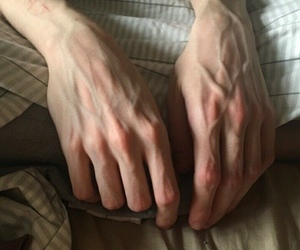 boy, sexy, and veins image