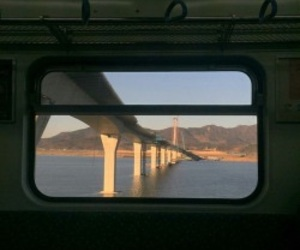 nature, train, and view image