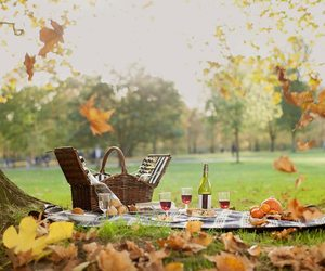 coolers, best coolers, and for picnics image
