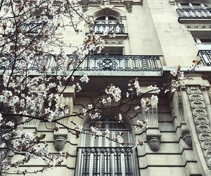 architecture, flowers, and style image