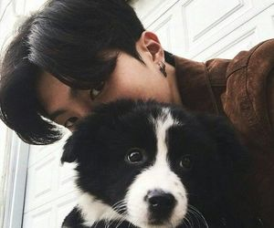 asian, boy, and dog image