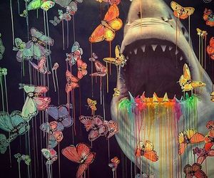 shark, art, and butterfly image