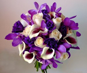 beautiful, colors, and purple image