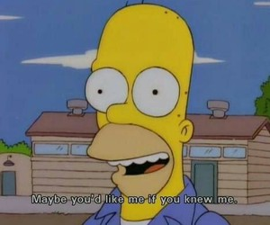 the simpsons, homer, and quotes image