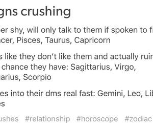 crush, horoscopes, and zodiac signs image
