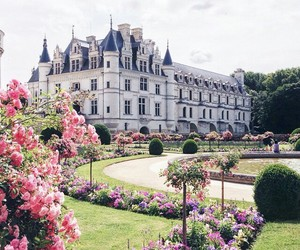 castle, flowers, and beautiful image