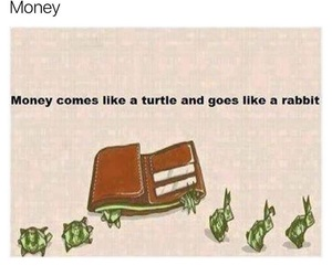 economics and money image