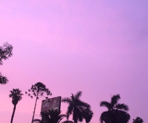 tumblr, pink, and purple image
