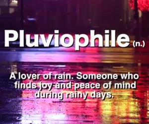 dictionary, rain, and words image