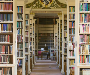books, bookshelf, and carpet image
