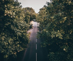 road, photography, and trees image