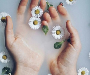 flowers and hands image