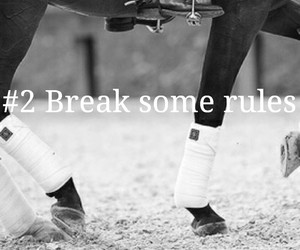 equestrian, motivation, and equestrian quotes image