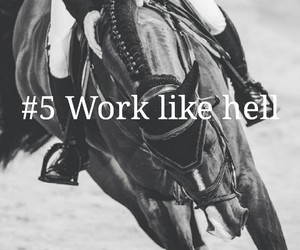 equestrian, horses, and motivation image