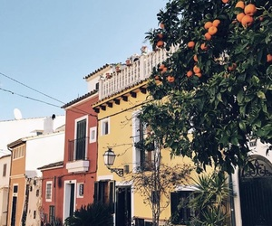 color, house, and summer image