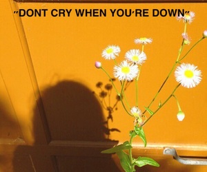 down, ed, and flowers image