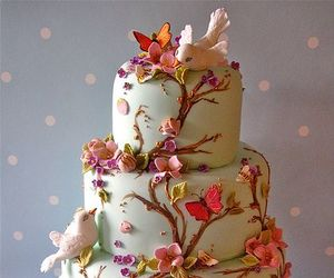 bird, butterfly, and cake image