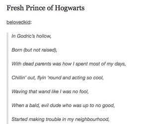 funny, harry potter, and potter image