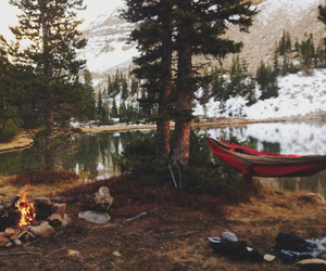 adventure, forest, and hammock image