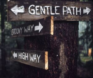 woodstock, path, and groovy image