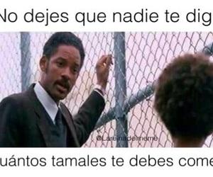 divertido, meme, and tamales image