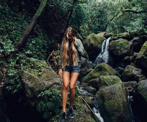 adventure and forest image