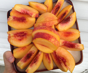orange, peaches, and stone fruit image