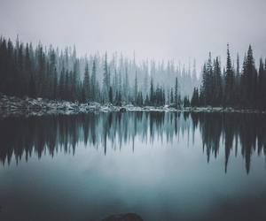 adventure, cold, and gloomy image