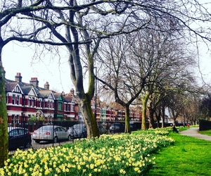 london, Londra, and spring image