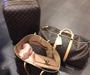 travel, bag, and Louis Vuitton image