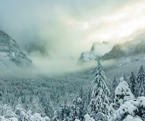 snow, winter, and winter landscape image