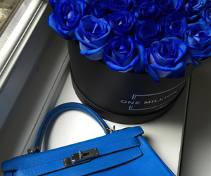 blue, royal blue, and flowers image