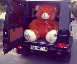 car, bear, and big image
