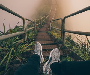 travel, fog, and nature image
