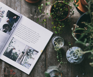 plants, book, and green image