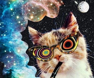 cat, psychedelic, and galaxy image