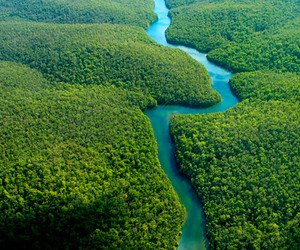 nature, photography, and amazone river image