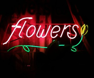 neon, flowers, and light image