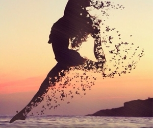 dance, beach, and sunset image